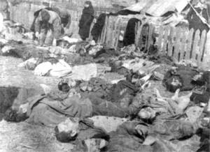ukrainskazbrodniawlipnikach